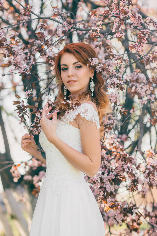 Красивая невеста на природе стоковое изображение rf