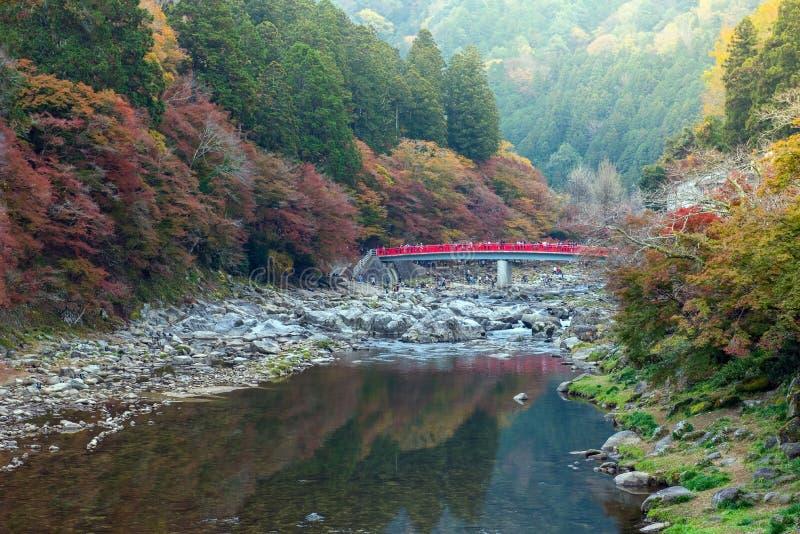 Красивая осень на Korankei стоковое изображение