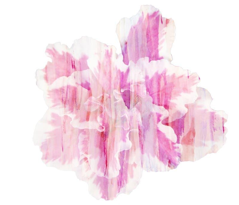 Красивая одиночная розовая азалия цветка, акварель иллюстрация вектора