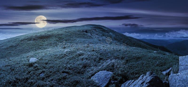 Красивая панорама в горах вечером стоковые фото