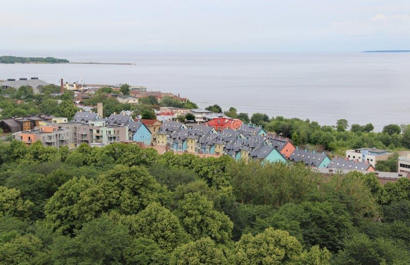 Красивая панорама Таллина, Эстонии стоковое изображение rf