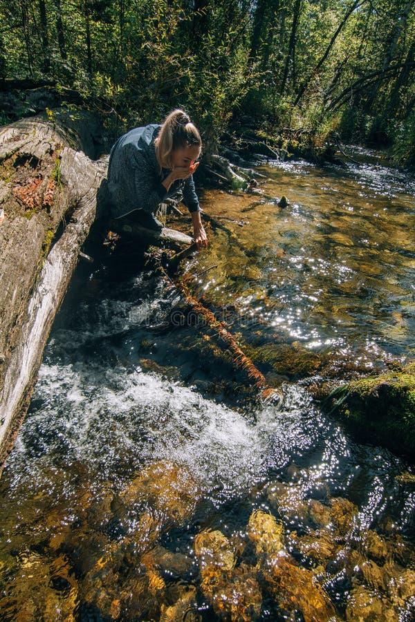 Красивая питьевая вода девушки от реки на журнале после перемещения Путешественник женщины летом проходит на деревянный мост внут стоковая фотография rf