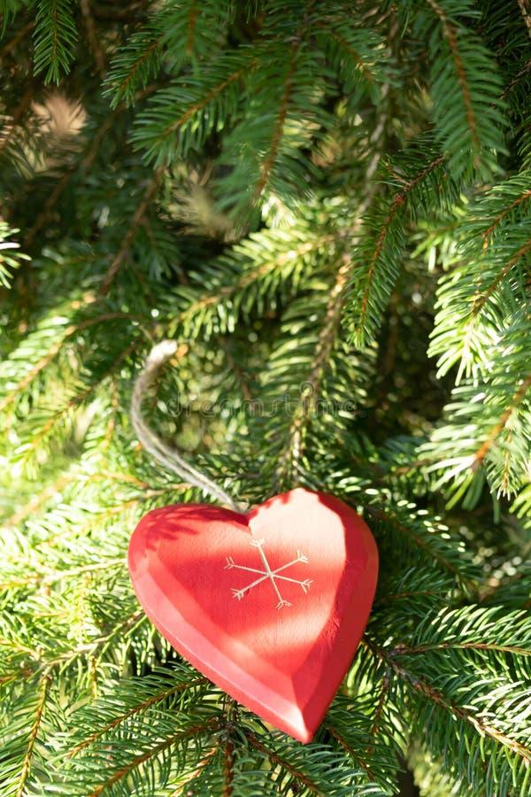 Красивая поздравительная открытка с Новым Годом 2019 и счастливые ветви рождественской елки дня Валентайн с красным сердцем дерви стоковые фото