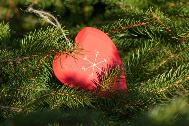 Красивая поздравительная открытка с Новым Годом 2019 и счастливые ветви рождественской елки дня Валентайн с красным сердцем дерви стоковые изображения rf