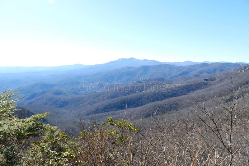 Красивая предпосылка ландшафта леса взгляда холма с голубым небом стоковая фотография rf
