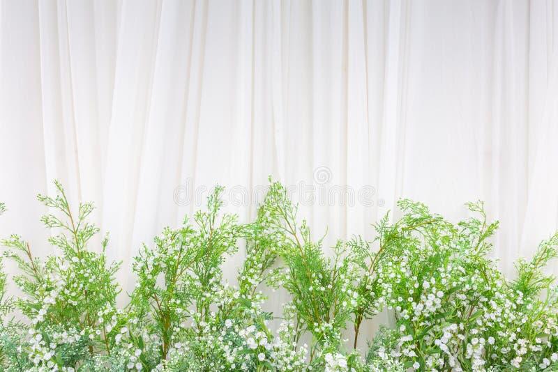 Красивая предпосылка цветков для сцены свадьбы на предпосылке стоковая фотография