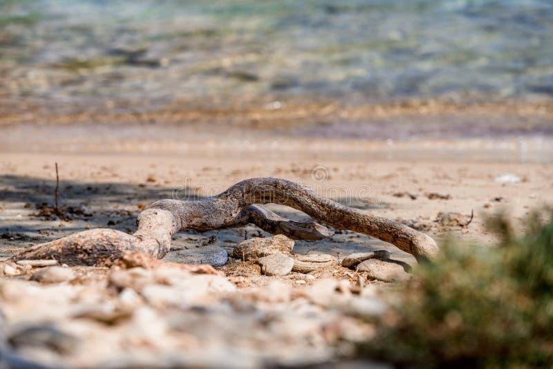 Красивая природа острова Antiparos Греции с кристаллическим открытым морем и изумляя взглядами стоковое фото rf