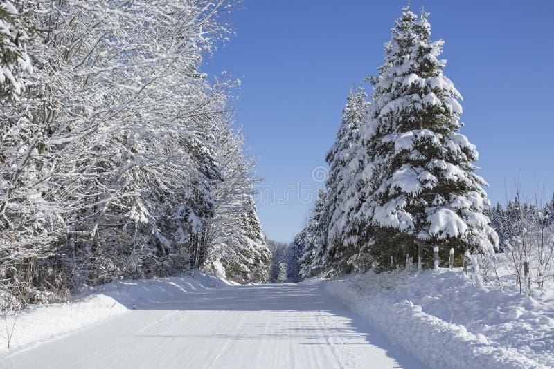 Красивая проселочная дорога зимы стоковое изображение