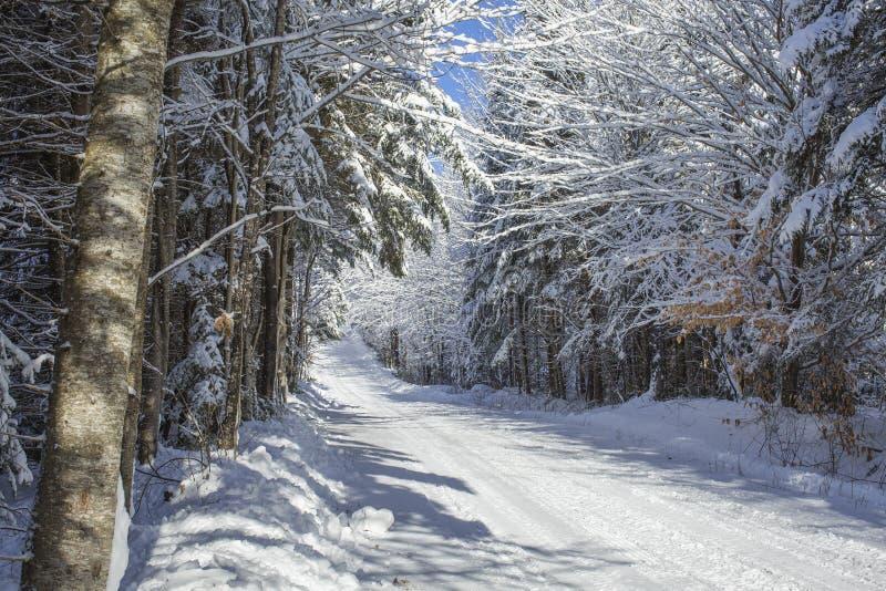 Красивая проселочная дорога зимы стоковая фотография