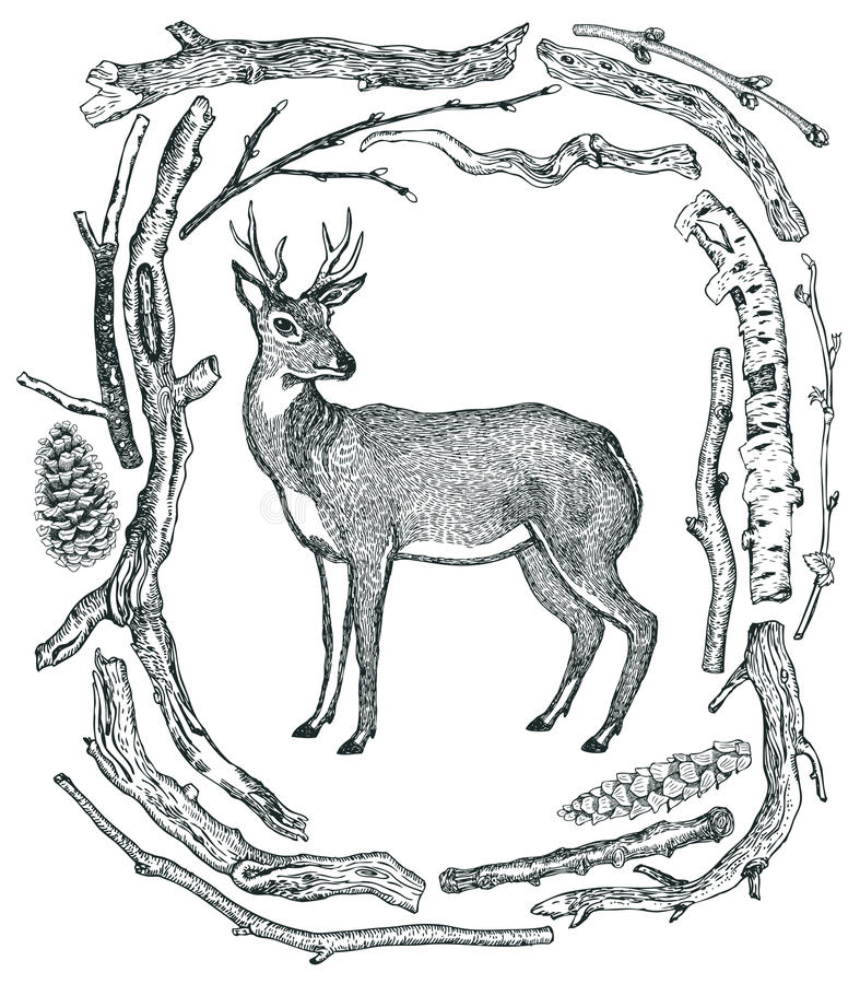 Красивая рамка оленей стиля h эскиза древесин Driftwood одичалого одичалого бесплатная иллюстрация