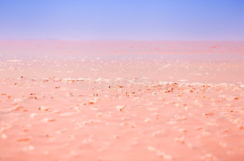 Красивая розовая предпосылка озера кристаллы соли в озере стоковые фото