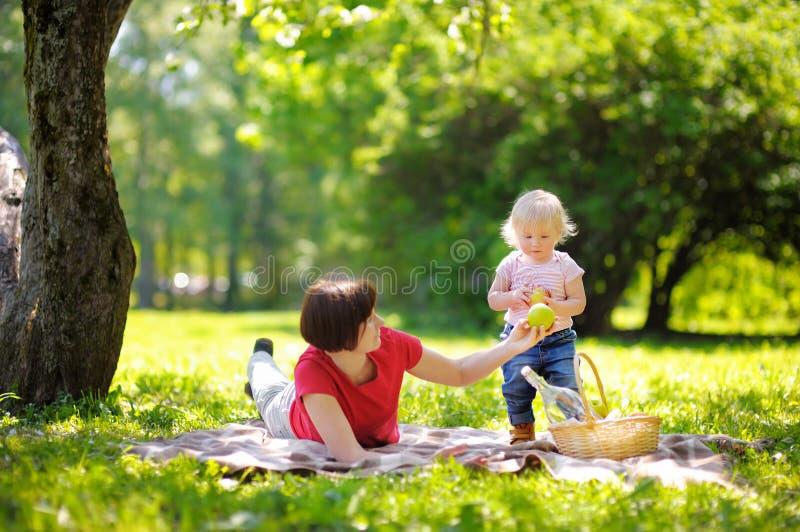 Красивая середина постарела женщина и ее маленький внук имея пикник стоковые изображения