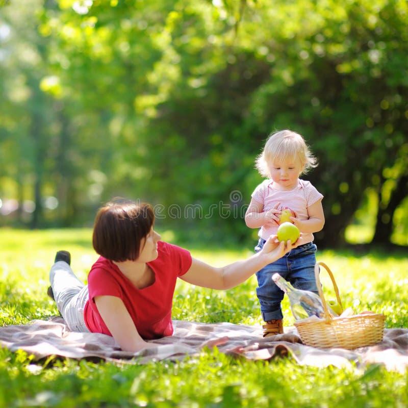 Красивая середина постарела женщина и ее маленький внук имея pic стоковое изображение rf