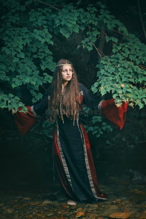Красивая средневековая женщина в потоке леса стоковое фото rf