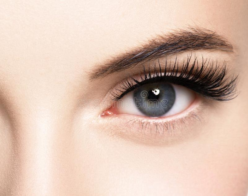 Красивая сторона женщины с ресницами хлещет расширение прежде и после макияж здоровой кожи красоты естественный закрыл глаза стоковые изображения