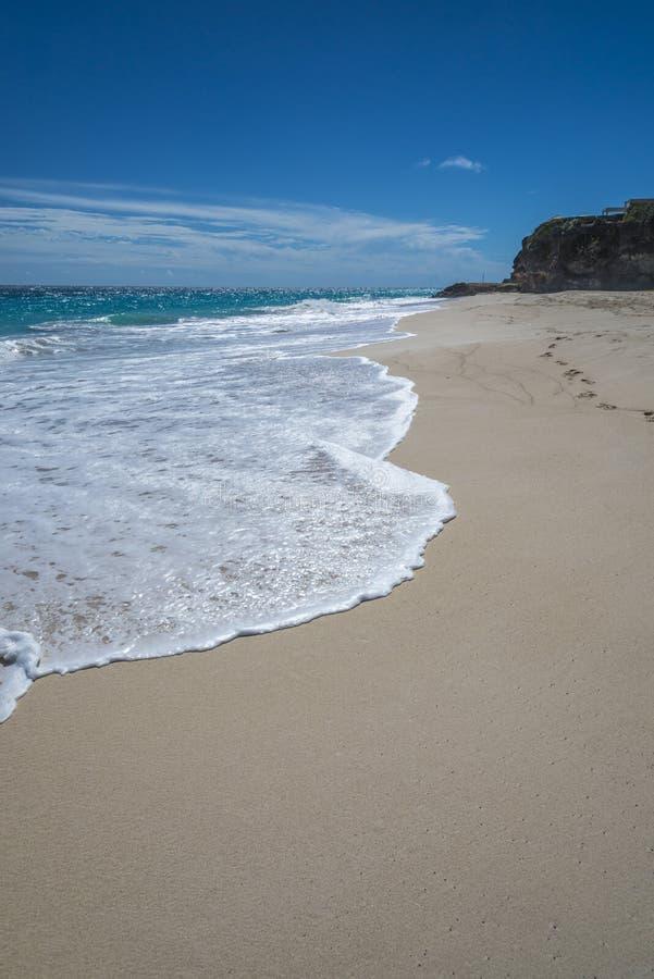 Красивая сцена Барбадос пляжа стоковые изображения rf