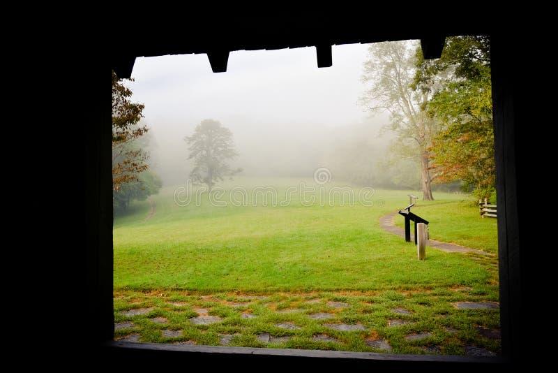 Красивая сцена страны в тумане утра стоковая фотография rf