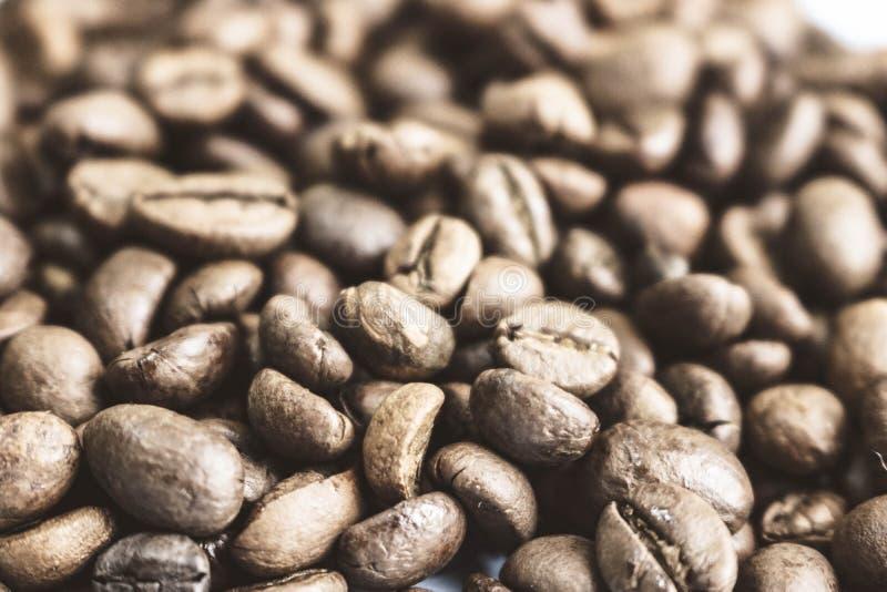 Красивая текстура свежо зажаренных в духовке выбранных очень вкусных богачей коричневеет естественные душистые зерна дерева кофе, стоковые фото