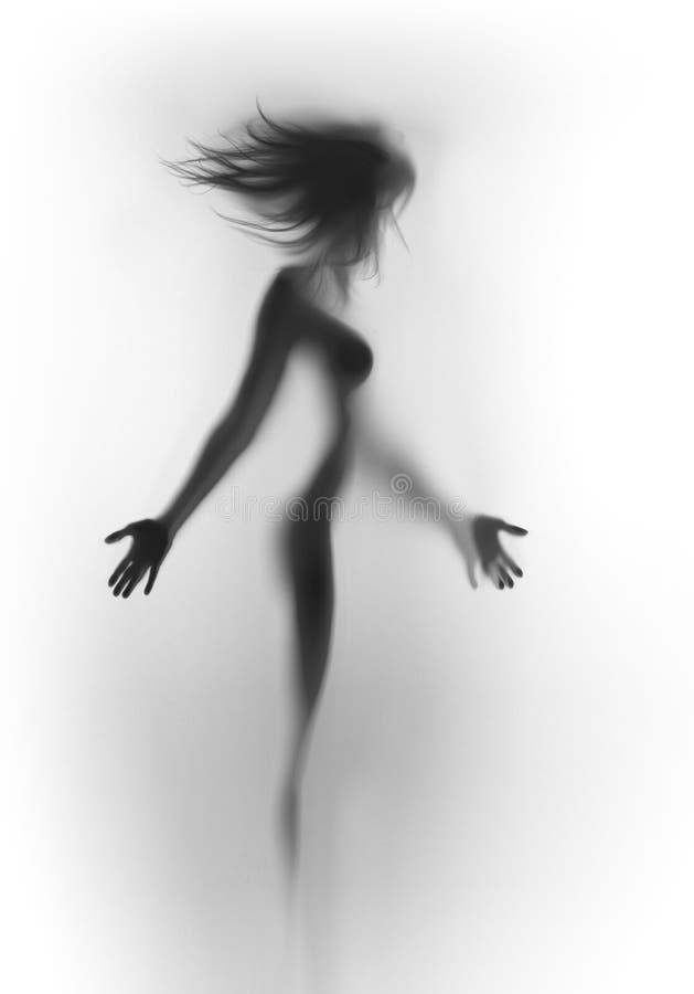 Красивая тонкая, сексуальная женщина с дуя волосами, за занавесом стоковые фотографии rf