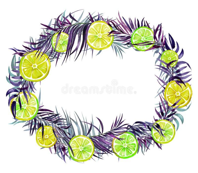 Красивая тропическая граница Яркие желтые и зеленые куски лимона и фиолетовые экзотические листья ладони изолированные на белой п иллюстрация вектора