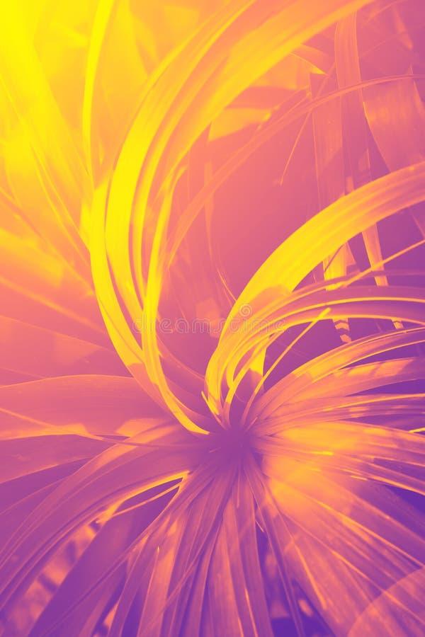 Красивая тропическая предпосылка лета природы Заводы джунглей с длинной иглой как качая листья в форме розетки Неоновые цвета иллюстрация вектора