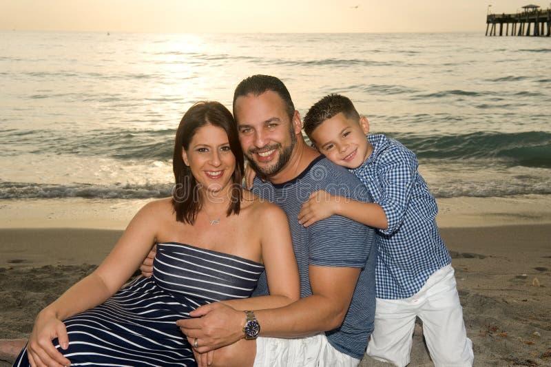 Красивая усмехаясь семья брюнет стоковые изображения rf