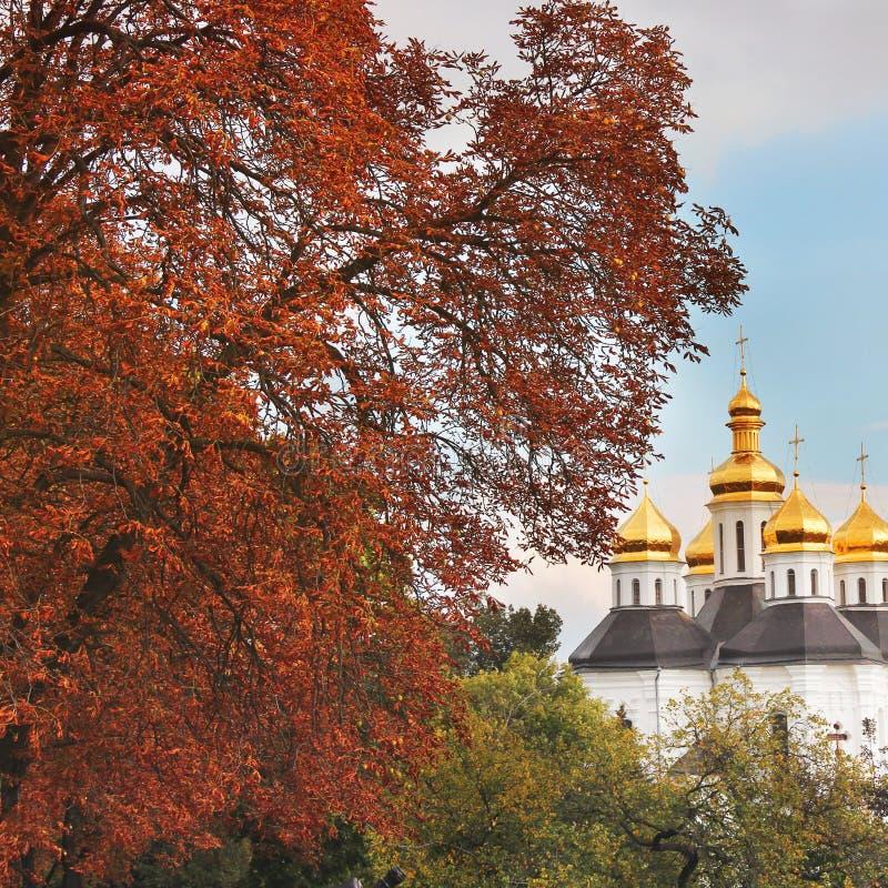 Красивая церковь в парке придает куполообразную форму: золотистое Осень стоковое фото