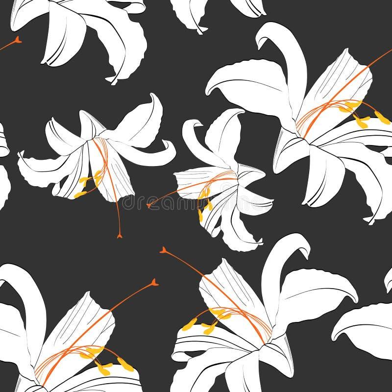 Красивая черно-белая безшовная картина с лилиями Нарисованные вручную линии контура иллюстрация вектора