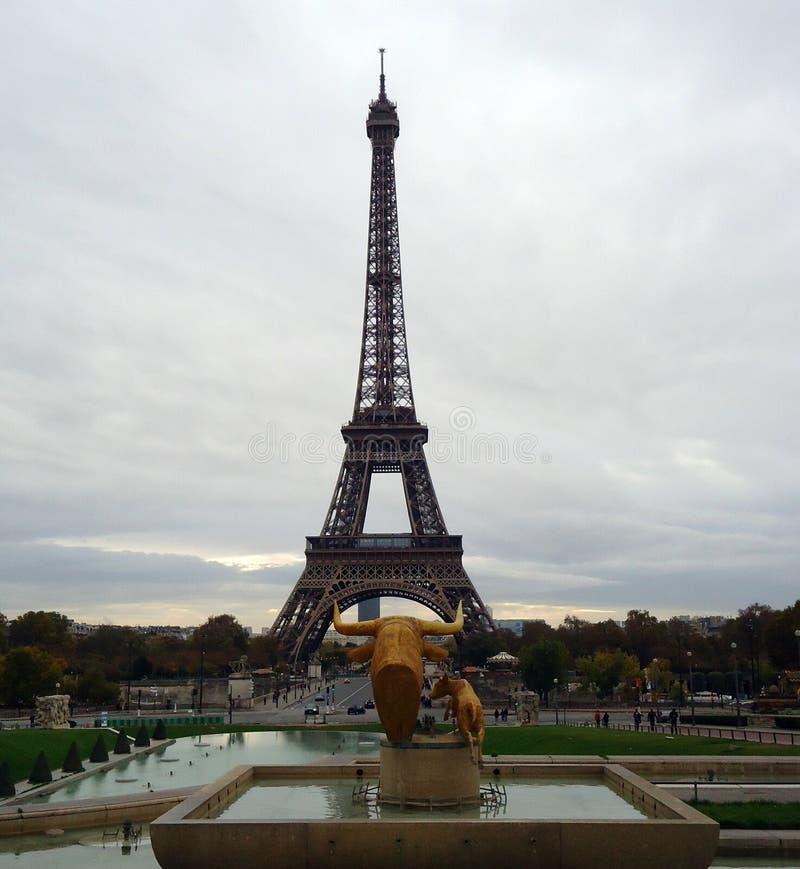Красивая Эйфелева башня в Париже стоковые изображения rf