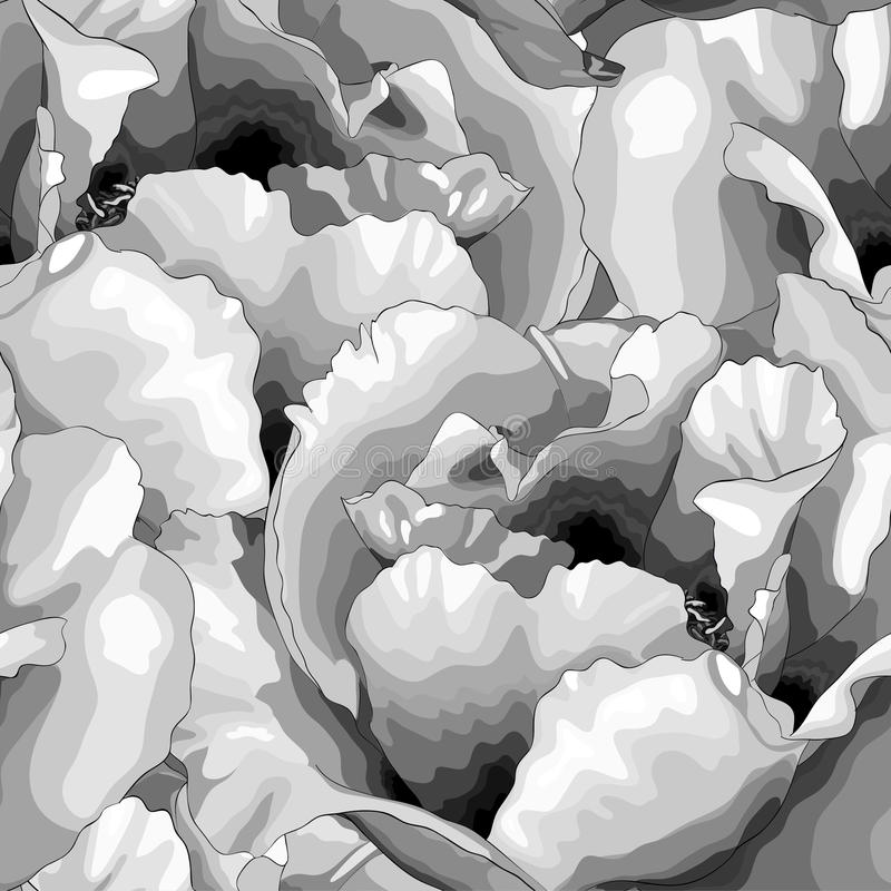 Красивая monochrome черно-белая безшовная предпосылка с цветками иллюстрация вектора