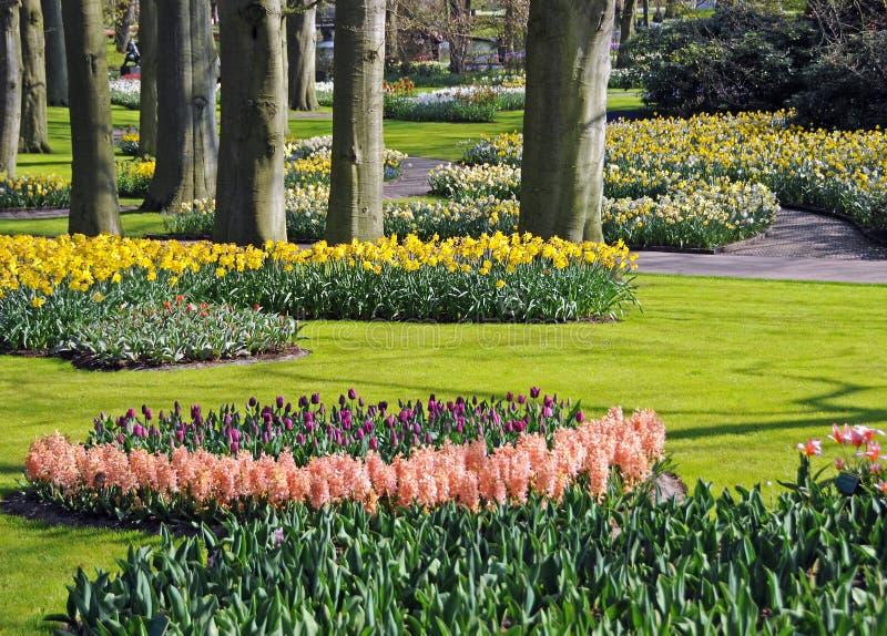 красивейшая весна сада стоковое изображение rf