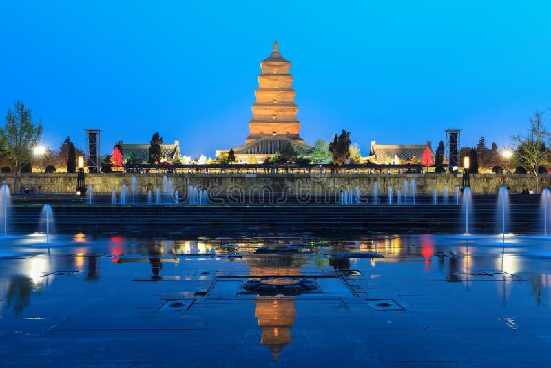 Гигантская одичалая пагода гусыни на ноче стоковые изображения rf