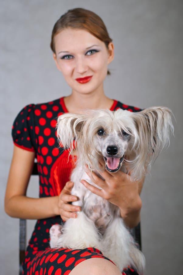 красивейшая девушка собаки стоковое фото rf