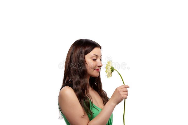 красивейшая женщина зеленого цвета платья стоковые изображения rf
