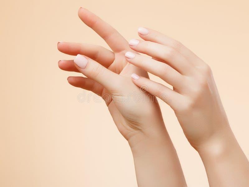 красивейшая женщина рук Женские руки прикладывая сливк, лосьон Концепция курорта и маникюра женский французский manicure рук кожа стоковая фотография