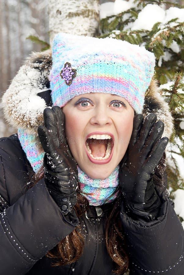 красивейшая зима помощи девушки звоноков стоковая фотография
