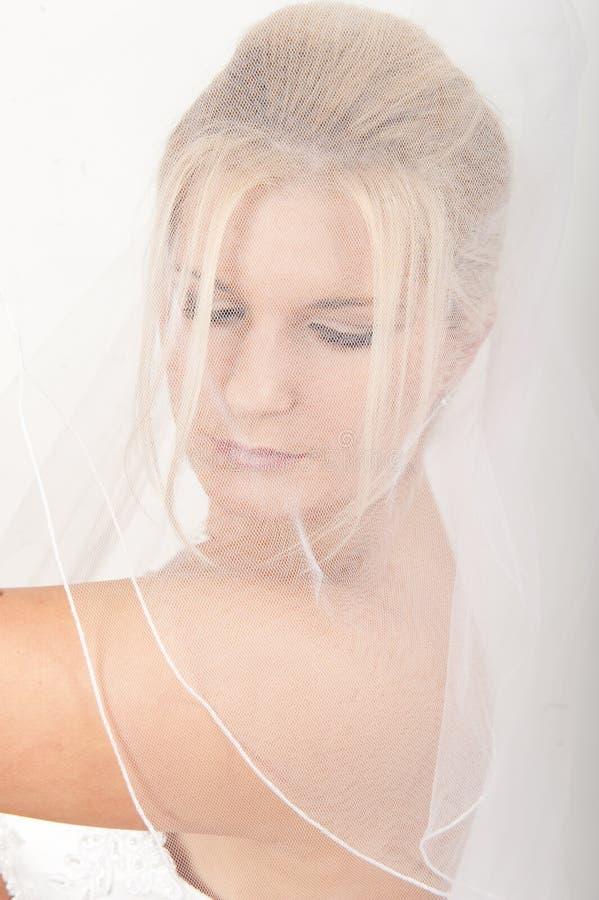 красивейшая невеста ее детеныши венчания вуали стоковое изображение