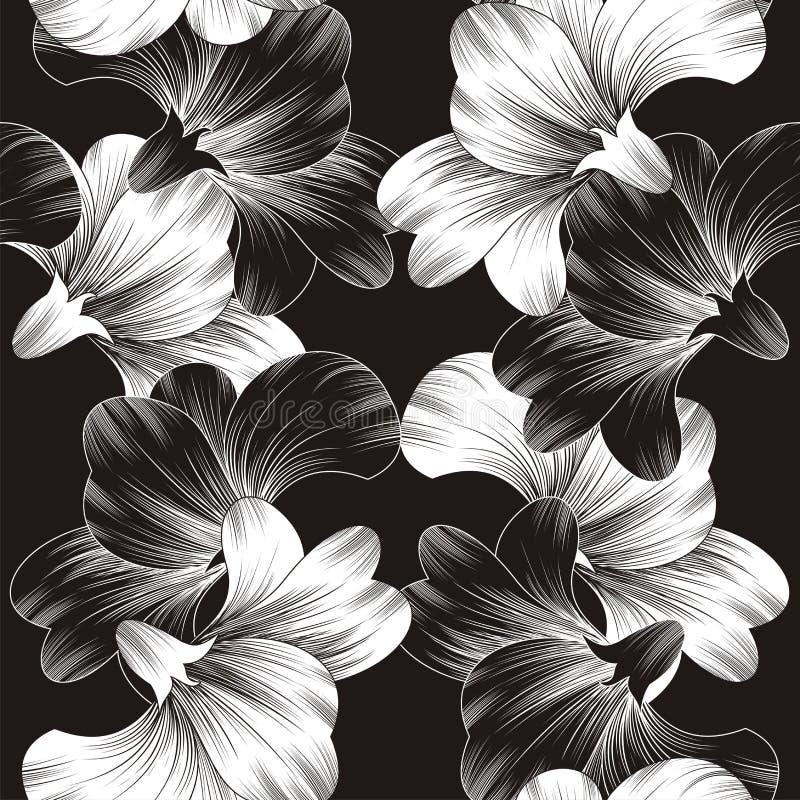 Красивейшая предпосылка цветка вектора иллюстрация вектора