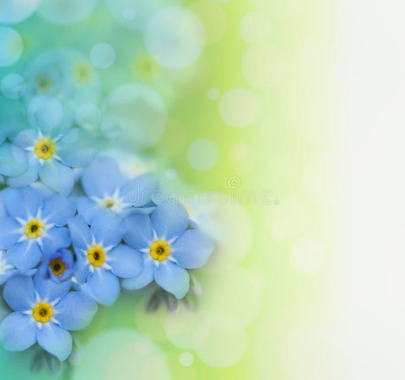 Красивейшая флористическая предпосылка стоковое фото rf