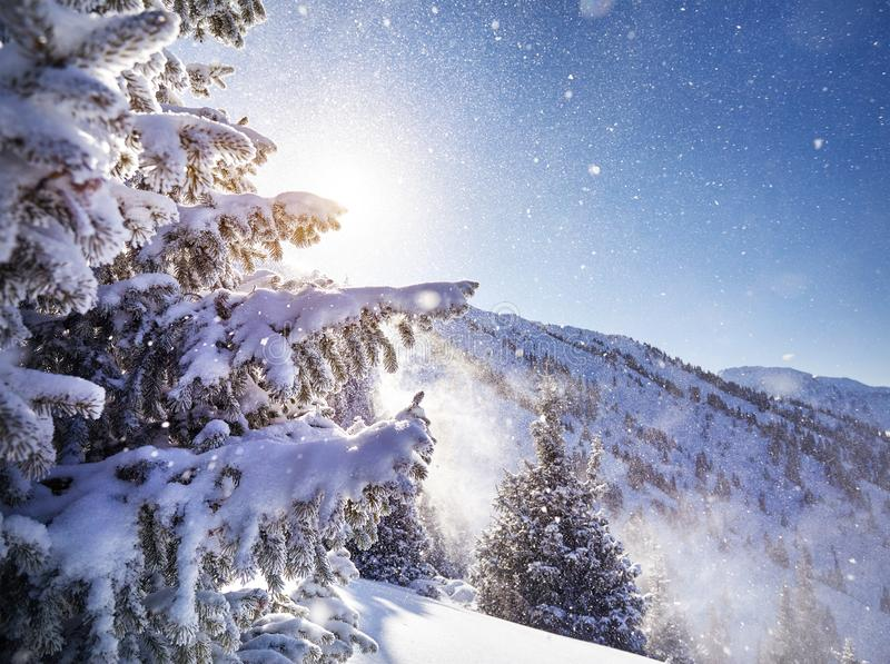 Download Красивейшее изображение зимы Landscape Стоковое Изображение - изображение: 106251519