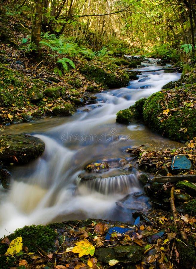 Download красивейшее место реки стоковое фото. изображение насчитывающей спуск - 6865088
