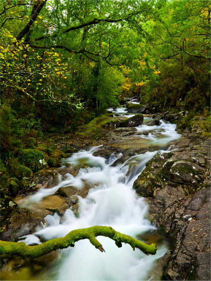 красивейшее река стоковое изображение rf