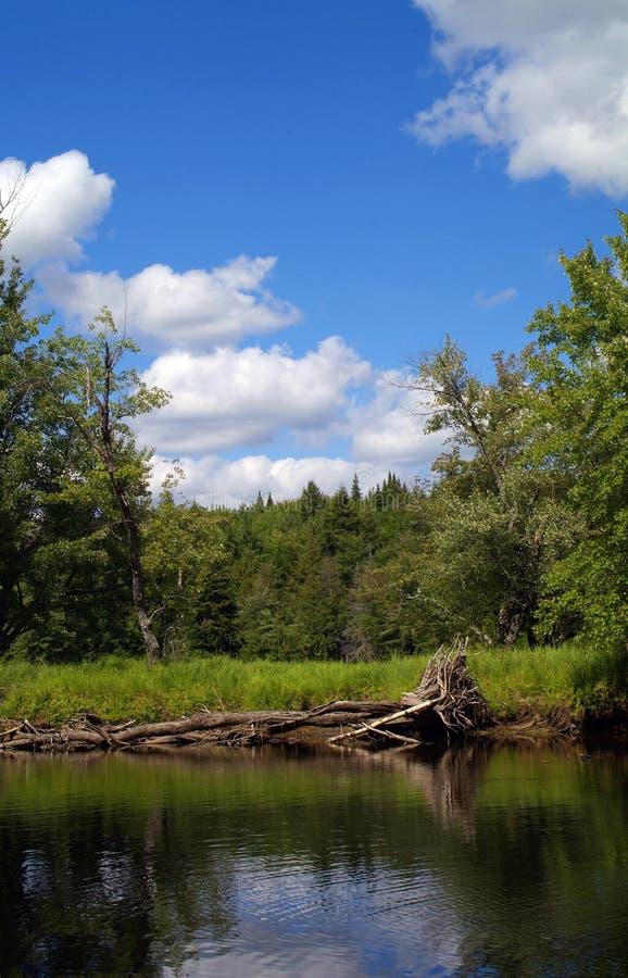 красивейшее река raquette стоковое фото
