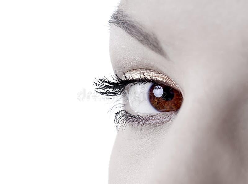 красивейшие глаза стоковое фото