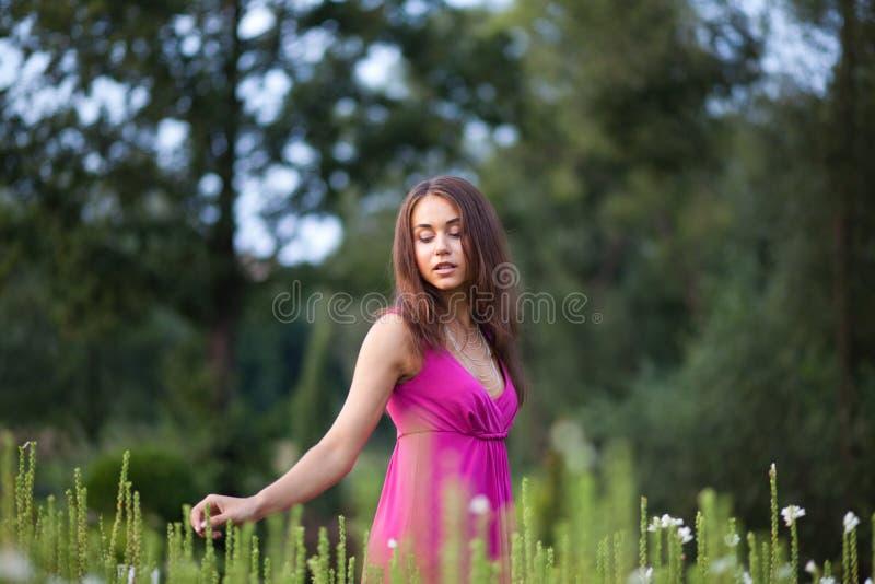 красивейшие детеныши женщины стоковые изображения rf