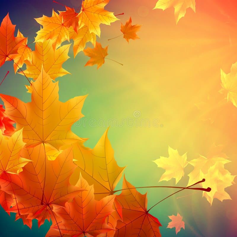 Красивейшие листья осени иллюстрация вектора