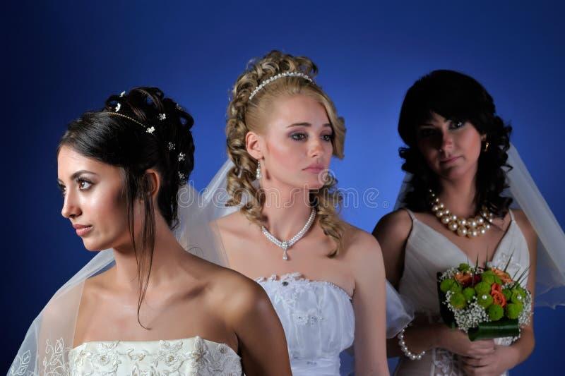 красивейшие невесты стоковые фото