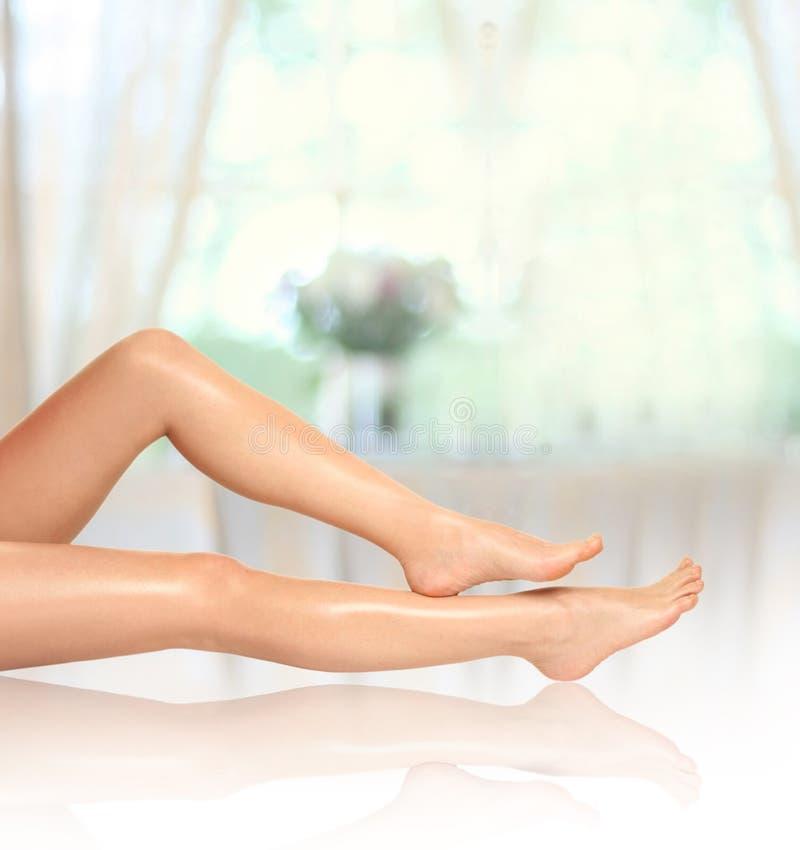 красивейшие ноги 1 стоковое изображение