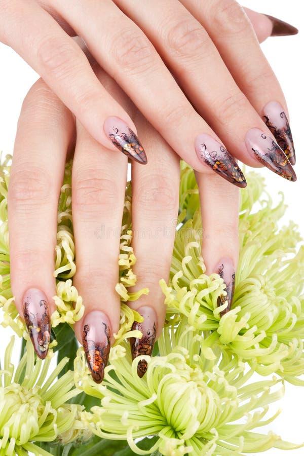 красивейшие ногти изображения крупного плана стоковая фотография