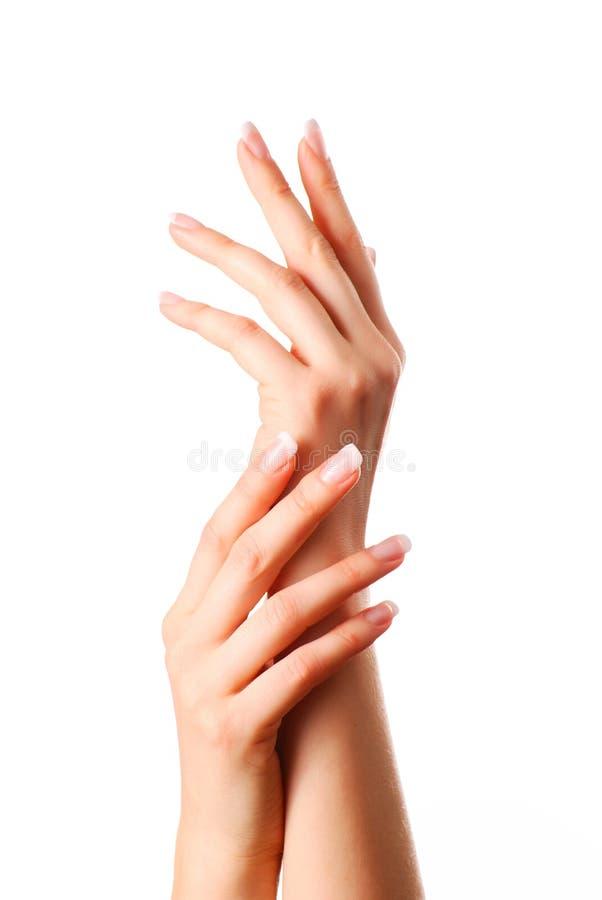 красивейшие руки стоковое фото rf